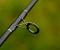 08_2556-METHOD_FEEDER-3_7 - Stránka se otevře v novém okně